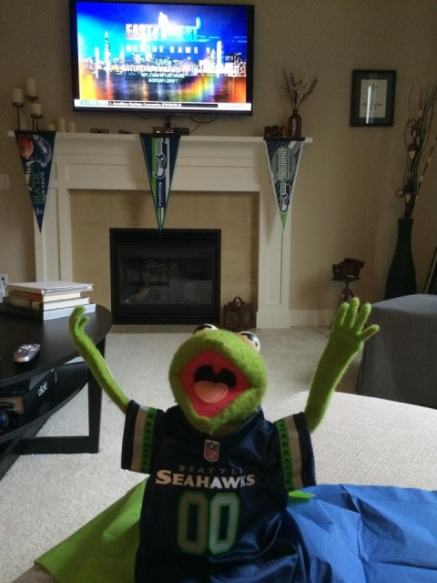 Seahawks Kermit Fan Seattle Photographer