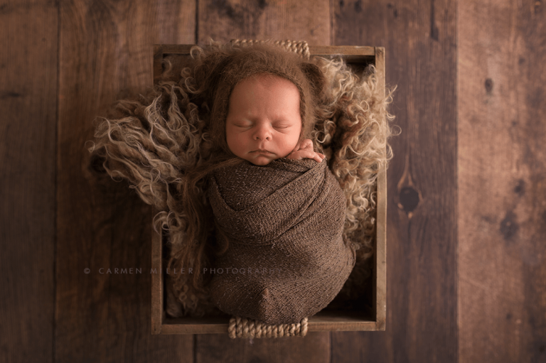 newborn photographer in bothell