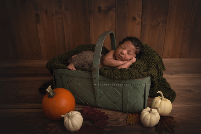 newborn baby photographer seattle