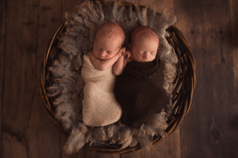 seattle newborn photographer twin boys