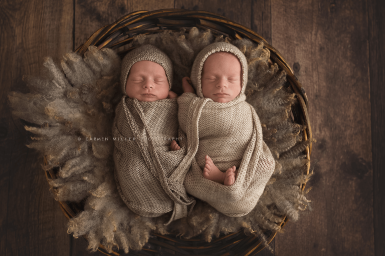 seattle baby photographer twins